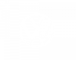 vw_logo-small_250_w